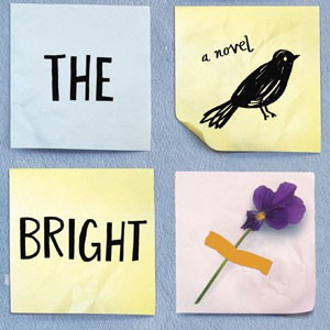 Image: All The Bright Places