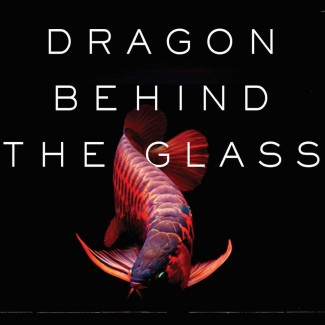 Image: Dragon Behind the Glass