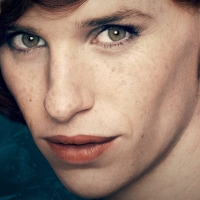 Image: The Danish Girl