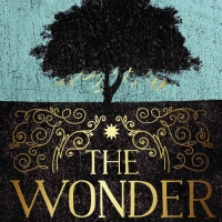 Image: The Wonder