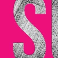 Letter S from book cover