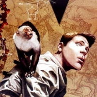 Y: The Last man book cover